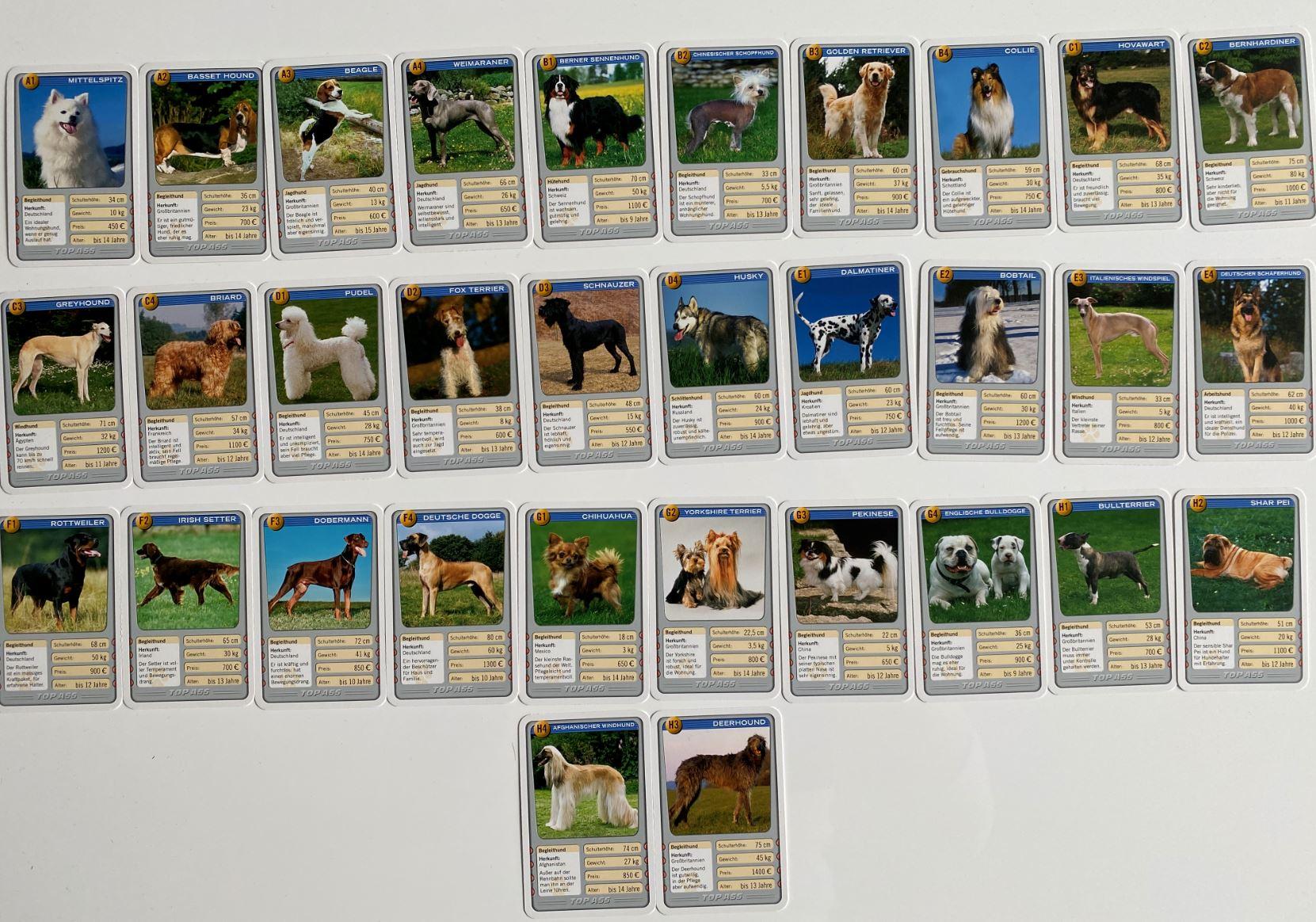 Karten Hundequartett